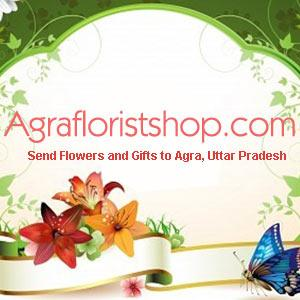 Order online for Same Day Delivery of Best Valentine's Day Gifts to Agra with Free Shipping - Img 1