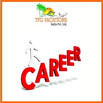 Internet advertising/Freelancer Required in TFG Vacations at Chennai, India - Img 1