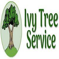 Ivy Tree Service