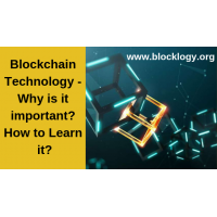 Blockchain Technology - Why is it important? How to Learn it?