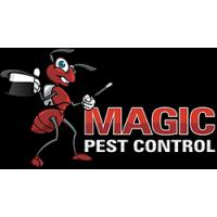 phoenix bee control,termite control phoenix,bee removal phoenix
