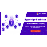 Professional Hyperledger Development Company in USA