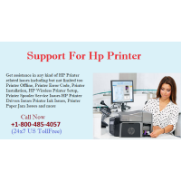 Approach experts at Hp Printer Support Number to share Paper jam issues
