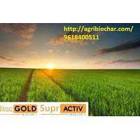 Buy Biochar at affordable rates