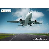 Where to Book Cheap Flights from Dallas To Chicago Online?