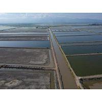 Shrimp farm for sale - Ecuador - Guayas continent