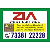 Zia Pest Control Service Treatment Cockroach | Bed Bugs Treatment |73381 22228 |