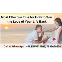 Most Effective Tips for How to Win the Love of Your Life Back - pandit kapil Sharma