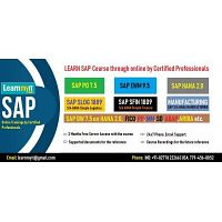 Learn SAP Course Online by Certified Consultants.