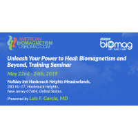 Biomagnetism and Beyond, Training Seminar from May 22-26th 2019
