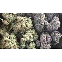 Explore weed strains & varieties at Weed Reader