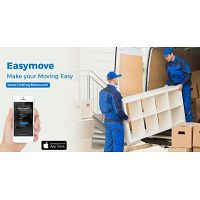 Fast Furniture and Appliance Delivery in Chicago