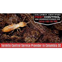 Termite Control Service Provider in Columbia SC