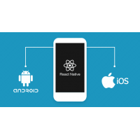 Hire Dedicated React Native Developer and Programmers in india