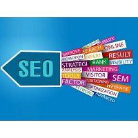 Professional seo services company usa