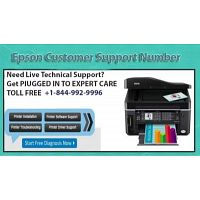 Dial Our Epson Printer Tech Support Phone Number for Technical Assistance