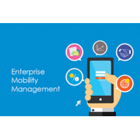 Why Enterprise Mobile App Development Services Useful for our Business