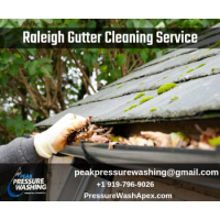Best Raleigh Gutter Cleaning Service