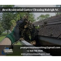 Best Residential Gutter Cleaning Services at Raleigh NC