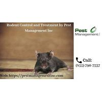 Rodent Control and Treatment by Pest Management Inc