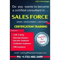 Sales Force Online Training in USA
