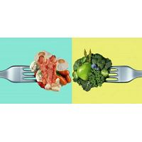 Chapter I Diet Wars | Healthy Diet Plan - Foodology