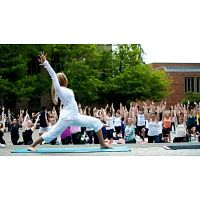 300 Hour Yoga Teacher Training Program in India