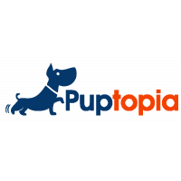 Puptopia is New York City's best in show dog walking service