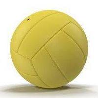 Volleyball Exporter In Meerut