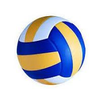 Volleyball Manufacturers In Meerut
