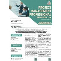 PROJECT MANAGEMENT PROFESSIONAL TRAINING - PMP