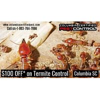 $100 OFF* on Termite Control Columbia SC