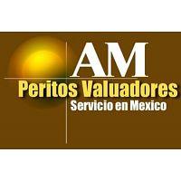 AM Peritos Valuadores Certificados y Autorizados