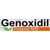 GENOXIDIL ANTIENVEJECIMIENTO CELULAR NRF2