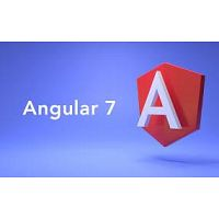 Angular 7 online training classes by Monstercourses