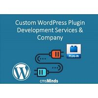 Custom WordPress Plugin Development Services & Company