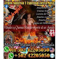 Maestros  y videntes de Guatemala 011 502 42205050 whatsapp