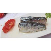 Moroccan Sardines factory,