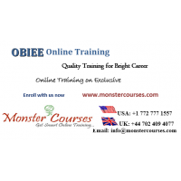 Oracle Online Training Classes by Monstercourses