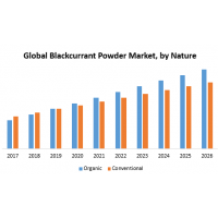 Global Blackcurrant Powder Market