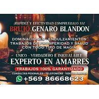 TRABAJOS DE AMOR GARANTIZADOS LLAME AL +56986668623