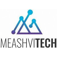 Meashvi Technologies LLC- Information Technology and Services