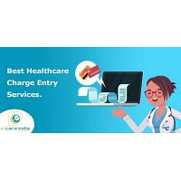 Best Healthcare Charge Entry Services.