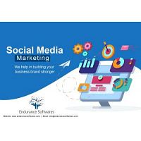 Social Media Marketing Company India | SMM Services | Endurance Softwares