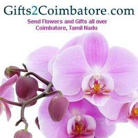 Send Unique Rakhi Gifts to Coimbatore at Low Cost- Guaranteed Delivery before Rakhi
