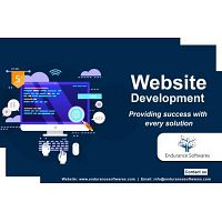 Best Web Development Company India | Endurance Softwares