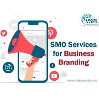 VSPL provides best SMO Services for Business Growth