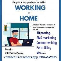 Get a best chance to earn money at home by doing some simple online jobs.