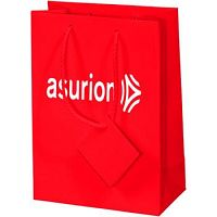 Buy Custom Printed Paper Bags to Recognize Brand