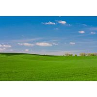 Looking for sell your land?